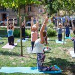 zajęcia jogi w plenerze Ohana