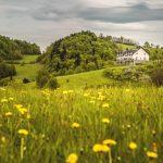 Bliżej Nieba wakacje z dziećmi w górach Ohana dzika natura